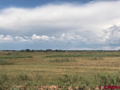 Tbd Road M, Cortez, CO 81321 - #: 729239