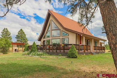 599 Old Sawmill, Pagosa Springs, CO 81147 - #: 736994
