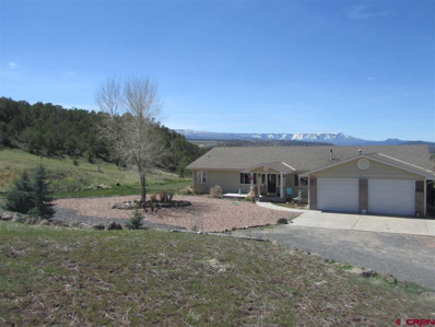 57840 Pe Road, Collbran, CO 81624 - #: 737795