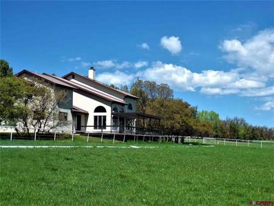 422 Meadowlark Ln., Durango, CO 81303 - #: 743286