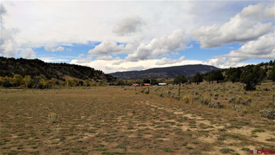 Tbd Cr 500, Arboles, NM 81121 - #: 743851