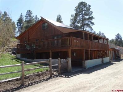 230 River Run, Pagosa Springs, CO 81147 - #: 744078