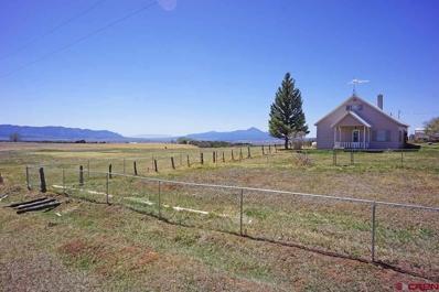 14195 Road 31, Dolores, CO 81323 - #: 744151