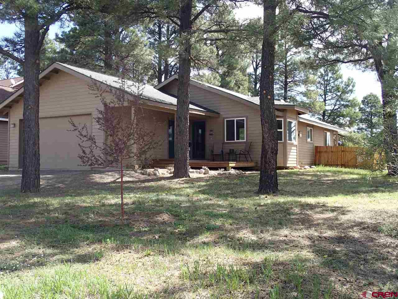 133 Lakewood, Pagosa Springs, CO 81147 - #: 745068
