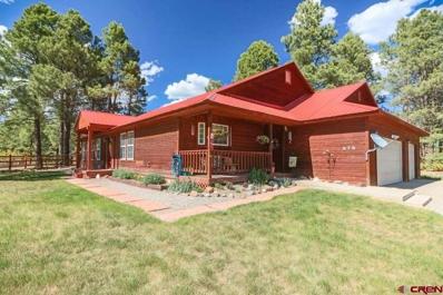 575 Antelope, Pagosa Springs, CO 81147 - #: 745245