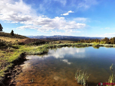 Tbd County Road 25, Powderhorn, CO 81230 - #: 745915