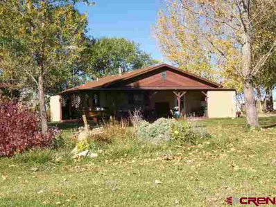 23692 Road U, Dolores, CO 81323 - #: 745930
