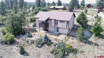 100 Monte Vista, Pagosa Springs, CO 81147 - #: 746707