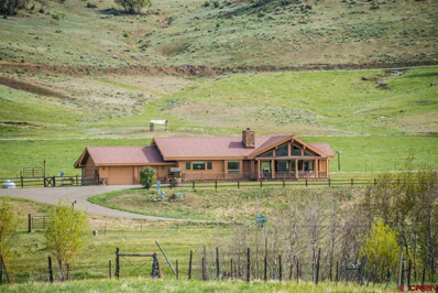 778 County Road 382, Pagosa Springs, CO 81147 - #: 746820