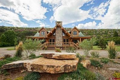 5474 County Road 203, Durango, CO 81301 - #: 748744