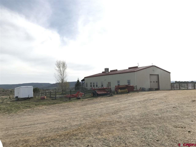 777 County Road 977, Arboles, CO 81121 - #: 749024