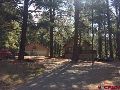 142 Little Bear Drive, Bayfield, CO 81122 - #: 749719