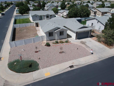 785 Barstow, Delta, CO 81416 - #: 749735