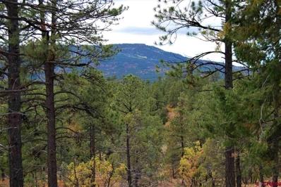 1112 S Black Bear, Pagosa Springs, CO 81147 - #: 751580