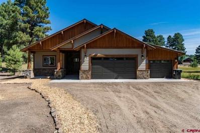 38 Ripple, Pagosa Springs, CO 81147 - #: 754079