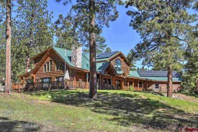 159 Shiloh Circle, Durango, CO 81303 - #: 754674