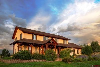 130 Echo Creek, Pagosa Springs, CO 81147 - #: 755854