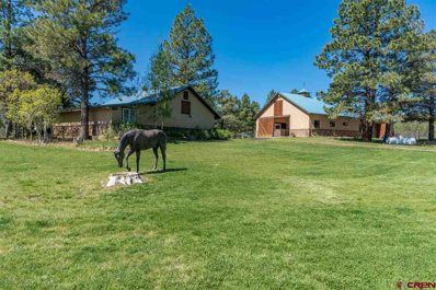 1441 Buttress, Pagosa Springs, CO 81147 - #: 758656