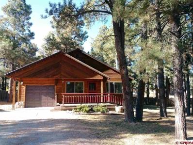 47 Palm, Pagosa Springs, CO 81147 - #: 758948