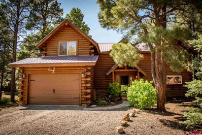 90 Redwood, Pagosa Springs, CO 81147 - #: 759877