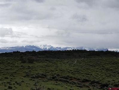 125 Archuleta Mesa, Pagosa Springs, CO 81147 - #: 761168
