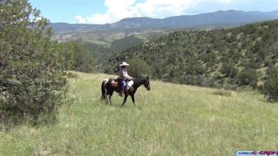 1209 Bear Mountain, Silver City, NM 88061 - #: 763796