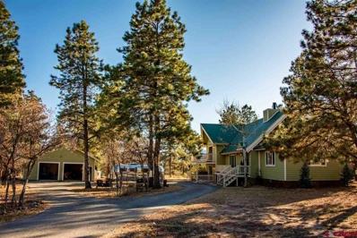 129 Castle, Pagosa Springs, CO 81147 - #: 764567