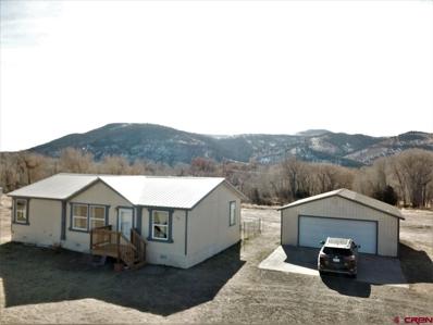 100 Toquima, South Fork, CO 81154 - #: 764777