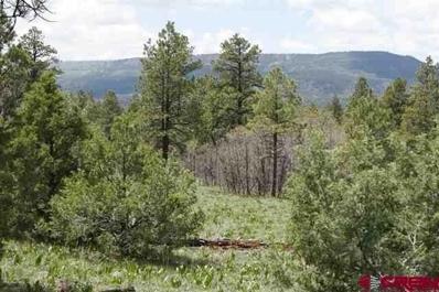 2399 Bull Elk, Pagosa Springs, CO 81147 - #: 765949