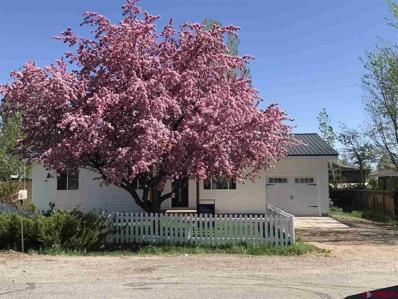 164 S Los Pinos, Bayfield, CO 81122 - #: 767724