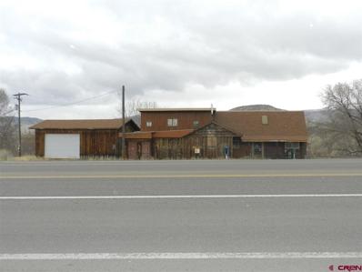 36926 Highway 550, Colona, CO 81403 - #: 767995
