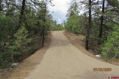 2308 Bull Elk, Pagosa Springs, CO 81147 - #: 768418