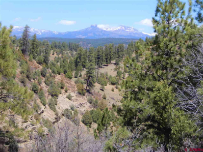 3990 County Road 359, Pagosa Springs, CO 81147 - #: 769255