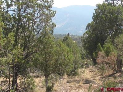 217 Summit Drive, Arboles, CO 81121 - #: 771255