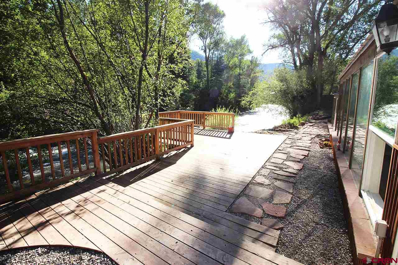 21661 Highway 145, Placerville, CO 81430 - #: 772808