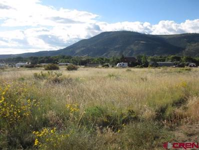 430 Commanche Peak Rd., South Fork, CO 81154 - #: 778351