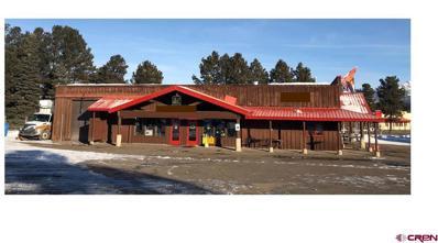 19 Navajo Trail Drive, Pagosa Springs, CO 81147 - #: 781594