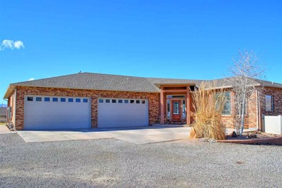 205 Knob Hill Drive, Grand Junction, CO 81503 - #: 20181768