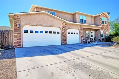 854 Mission Court, Fruita, CO 81521 - #: 20182911
