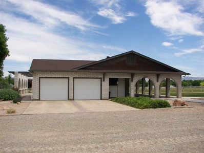 2174 Broadway, Grand Junction, CO 81507 - #: 20183227