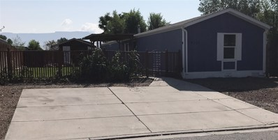 436 1\/2 Morning Dove Drive, Grand Junction, CO 81504 - #: 20184837