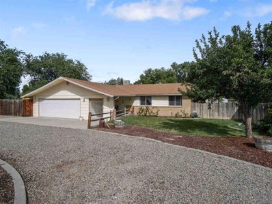 480 23 Road, Grand Junction, CO 81507 - #: 20185012