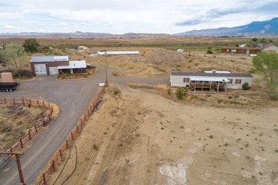 4214 S Highway 50, Whitewater, CO 81527 - #: 20185160