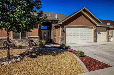 669 Tabor Avenue, Grand Junction, CO 81505 - #: 20185487