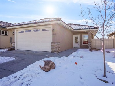 2841 Trevor Mesa Drive, Grand Junction, CO 81503 - #: 20185513