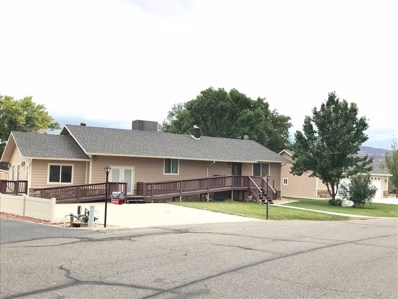 1683 Ruby Lee Drive, Fruita, CO 81521 - #: 20185572