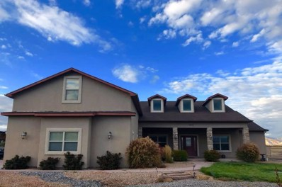 823 Mease Road, Grand Junction, CO 81505 - #: 20185983