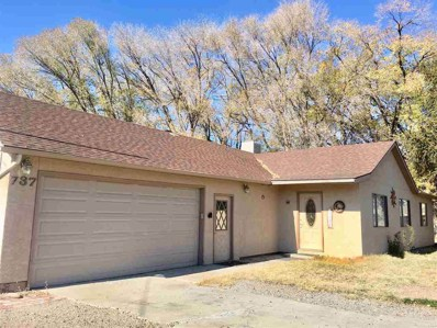 737 25 Road, Grand Junction, CO 81505 - #: 20186179