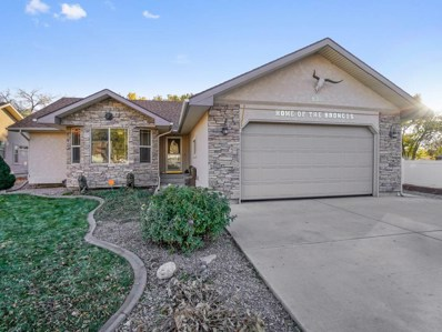 836 Lincoln Court, Palisade, CO 81520 - #: 20186251