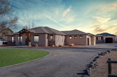 584 22 1\/2 Road, Grand Junction, CO 81507 - #: 20186499